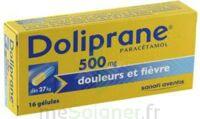 DOLIPRANE 500 mg Gélules B/16 à Malakoff