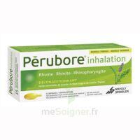 PERUBORE Caps inhalation par vapeur inhalation Plq/15 à Malakoff
